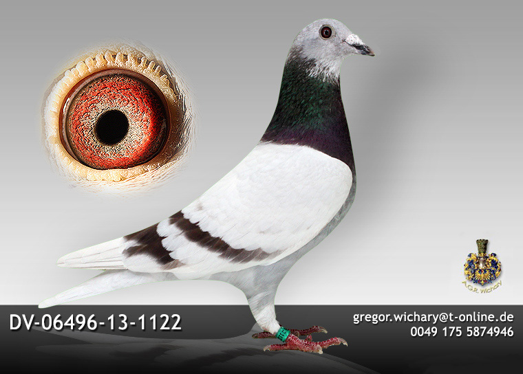 DV-06496-13-1122