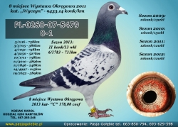 PL-0260-07-5479