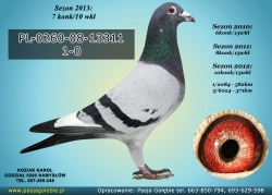 PL-0260-08-13311