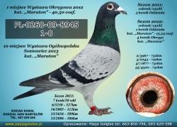 PL-0260-09-8945