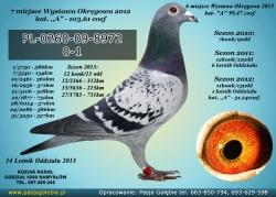 PL-0260-09-8972