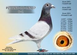 PL-0260-10-16907
