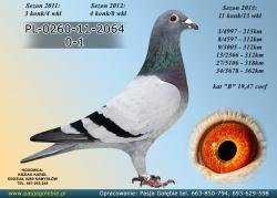 PL-0260-11-2064