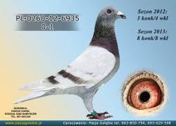 PL-0260-12-6935