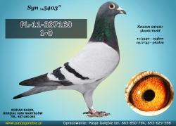 PL-11-337160