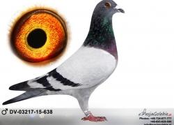 dv-03217-15-638
