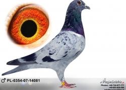 pl-0354-07-14081