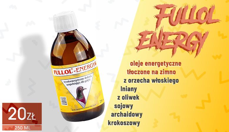 FullOil Energy 6