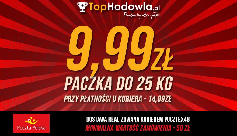 paczka_poczta999